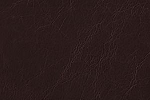 Distressed Java Buffalo Leather Swatch