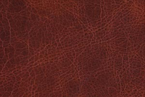 Luxe Mesquite Buffalo Leather Swatch