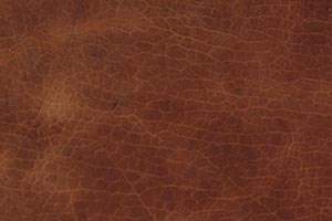Luxe Smokey Topaz Buffalo Leather Swatch
