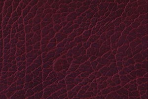 Mountain Ruby Buffalo Leather Swatch