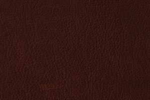 Ranch Java Buffalo Leather Swatch