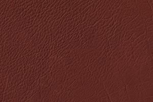 Ranch Mesquite Buffalo Leather Swatch