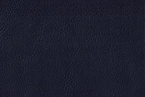 Ranch Midnight Buffalo Leather Swatch