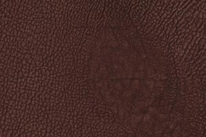 Ranch Navajo Mocha Buffalo Leather Swatch