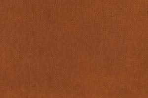 Ranch Saddle Buffalo Leather Swatch