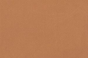 Bisque Buffalo Leather Swatch