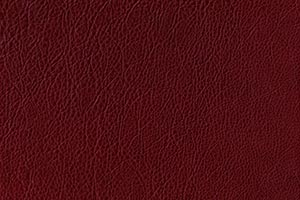 Cardinal Red Buffalo Leather Swatch