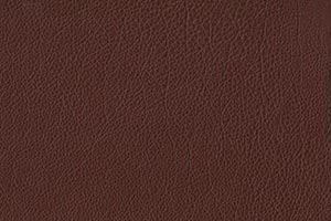Chocolate Buffalo Leather Swatch