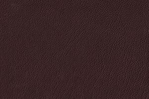 Cocoa Buffalo Leather Swatch