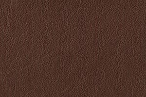 Coffee Buffalo Leather Swatch