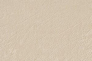 Creme Buffalo Leather Swatch