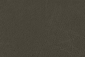 Sage Buffalo Leather Swatch