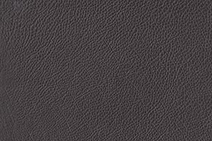 Slate Buffalo Leather Swatch