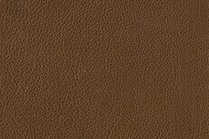 Tobacco Buffalo Leather Swatch